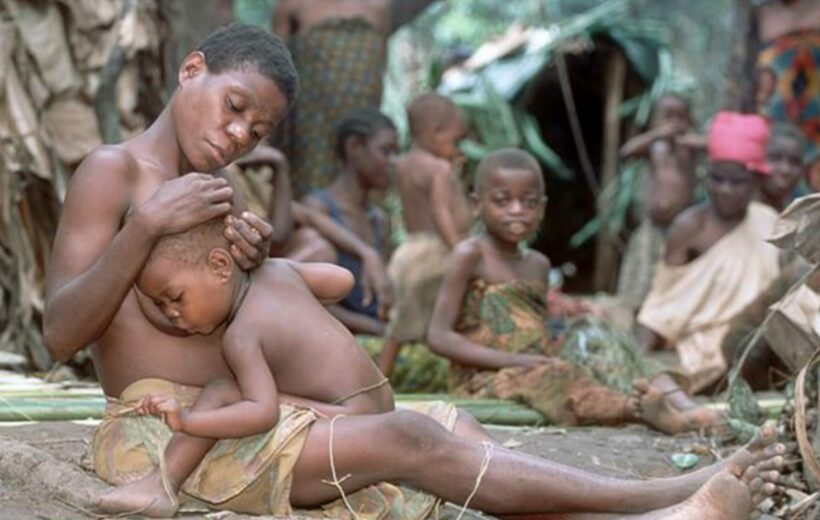 The Baka Pygmies In The Dja Reserve Of Cameroon